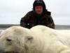 orso polare morto