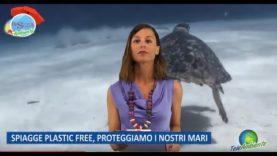 Plastica e inquinamento marino – Edizione speciale Rassegna Ambiente