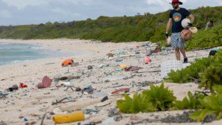 plastica isola di Henderson 2-min
