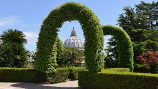 vaticano green