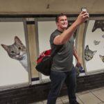 Londra, arriva la fermata metro dedicata ai gatti VIDEO