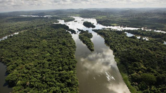 amazzonia patto