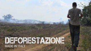 deforestazione made in italy