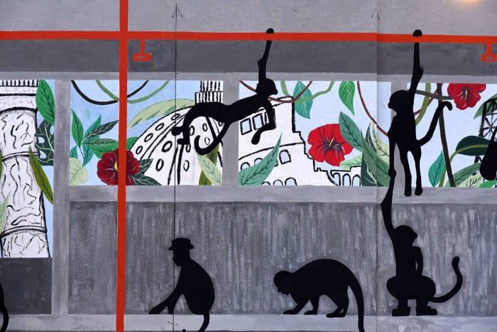 """Roma, a Talenti arriva """"la giungla urbana"""", il murale che purifica l'aria"""