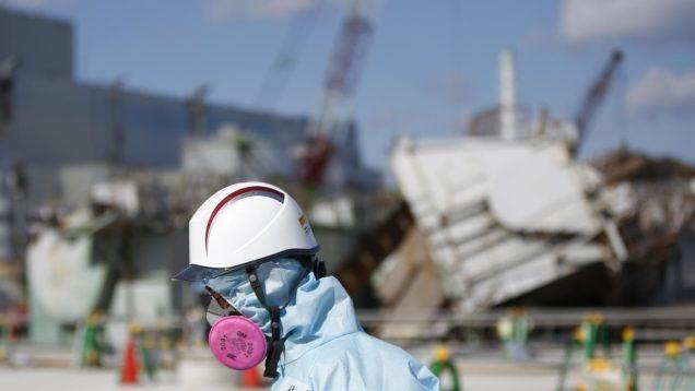 indagini fukushima 4