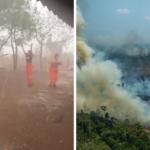 Amazzonia, le piogge spengono gli incendi e i volontari urlano di gioia VIDEO