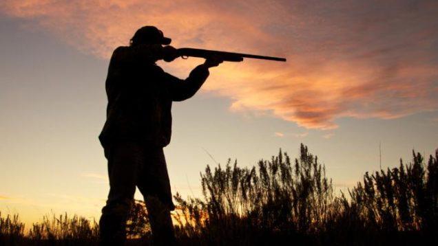 caccia stop puglia