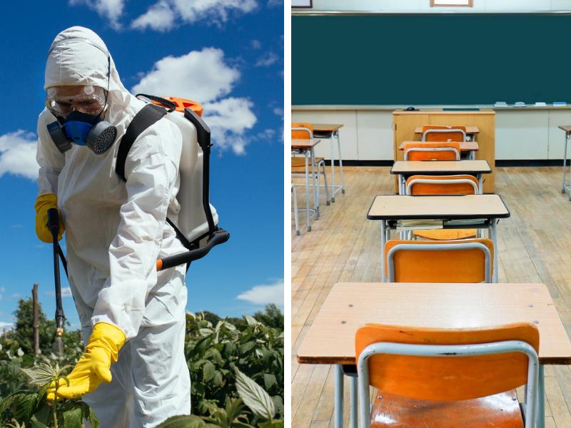 Pesticidi, subito al bando il Cloropirifos. Scatta l'allarme nelle scuole di Sabaudia