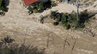 tifone Giappone sopravvissuti
