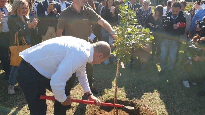 """Ambiente, Zingaretti: """"Pianteremo 6 milioni di alberi"""" VIDEO"""
