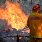 Australia, allarme incendi: dichiarato lo stato di emergenza catastrofico