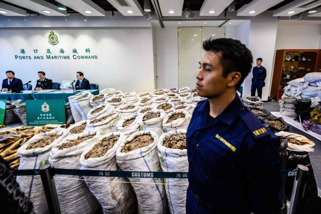 Coronavirus, la Cina chiude oltre 20.000 allevamenti di animali selvatici