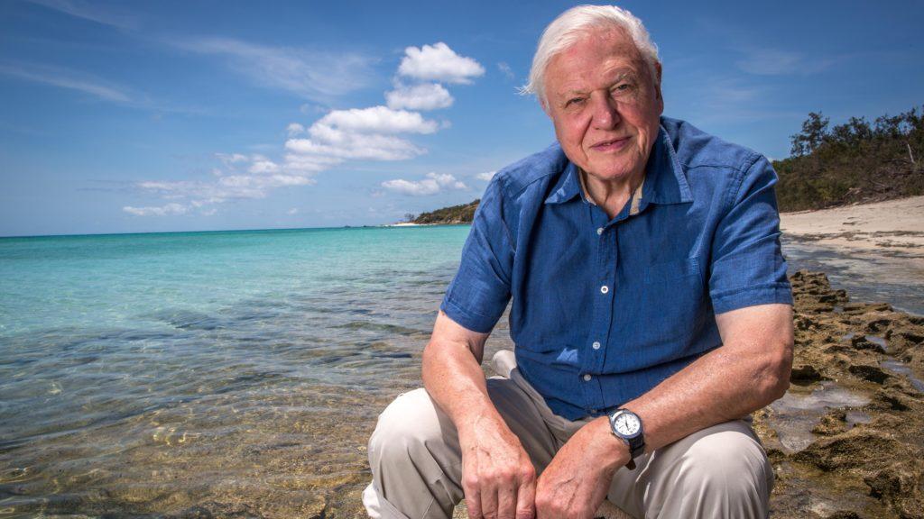 """Natura, la BBC presenta la serie """"Perfect Planet"""" di Sir David Attenborough"""