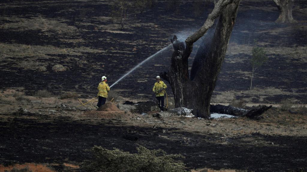 Australia, finalmente tutti gli incendi sono sotto il controllo dei vigili del fuoco