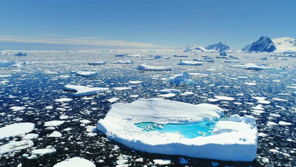 Artide, l' ecosistema sta mutando prima del previsto per via della crisi climatica