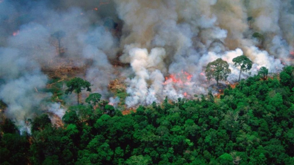 Coronavirus, il Brasile riduce la protezione della Foresta Amazzonica