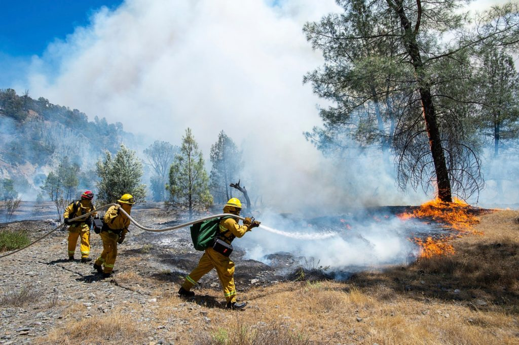 Australia, la devastante stagione degli incendi è giunta al termine