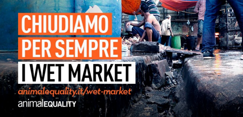 "Wet market, appello Animal Equality: ""Chiudiamo i mercati bagnati dal sangue"" VIDEO"