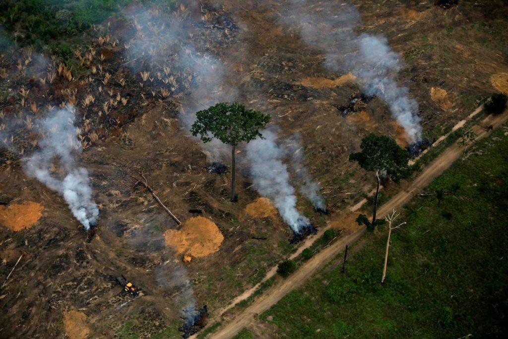 Deforestazione, i supermercati britannici minacciano di boicottare i prodotti brasiliani