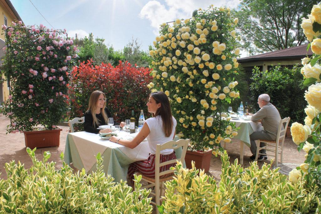 Fase 2, piante e fiori come distanziatori sociali: una soluzione green per bar, ristoranti e spiagge