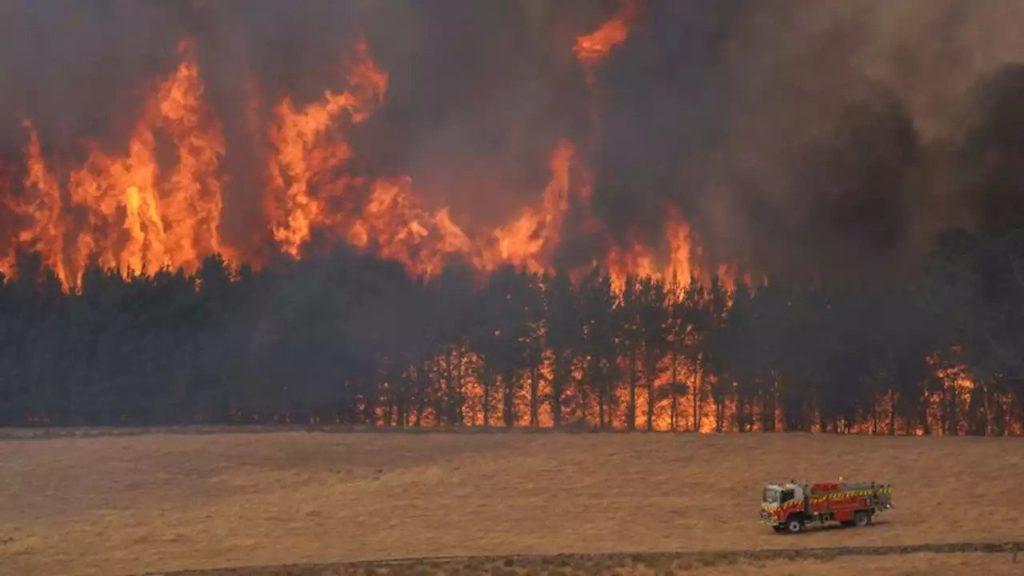 Australia, la frequenza e l'estensione degli incendi è aumentata negli ultimi anni
