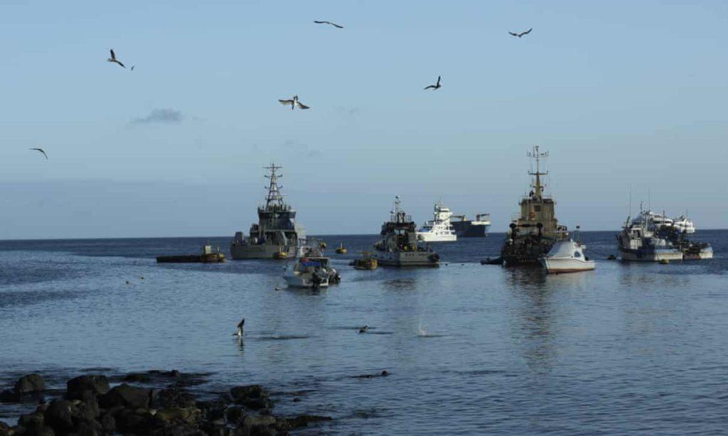 Galapagos, le isole patrimonio Unesco minacciate da una flotta di pescherecci cinesi