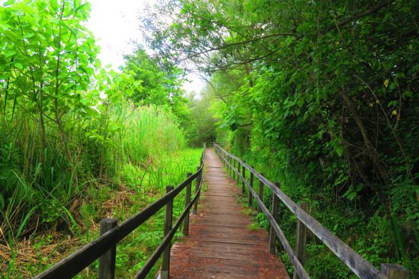 Conoscere la natura attraverso il turismo: Elekea lancia il nuovo programma di gite sostenibili