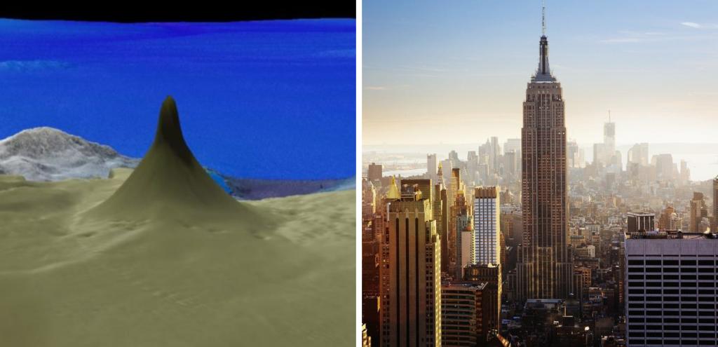 Australia, scoperta una barriera corallina più alta dell'Empire State Building