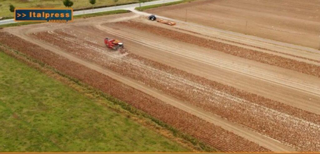 Nel 2018 dall'agroalimentare 16 mld di tonnellate di CO2 – Agrifood Magazine