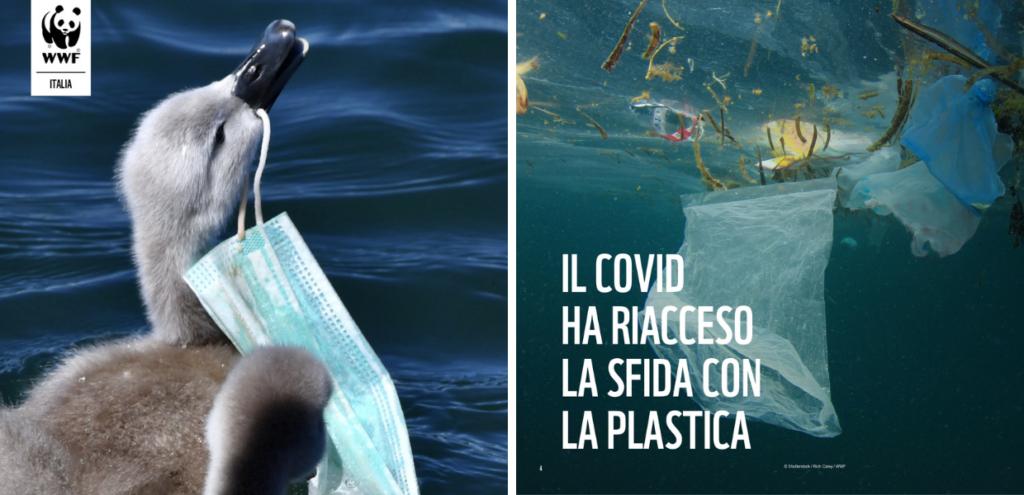 """L'allarme del WWF: """"La lotta al Covid frena quella all'inquinamento da plastica"""""""