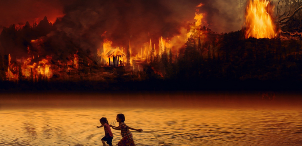 Incendi e inquinamento marino, come le fiamme stanno devastando terra e mare